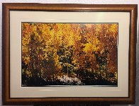 Fire of Autumn 1999 Panorama by Thomas Mangelsen - 1