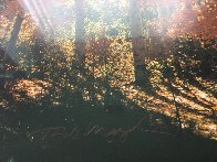 Fire of Autumn 1999 Panorama by Thomas Mangelsen - 2