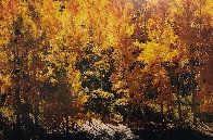 Fire of Autumn 1999 Panorama by Thomas Mangelsen - 0