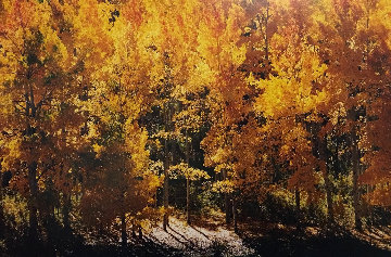 Fire of Autumn 1999 Panorama by Thomas Mangelsen
