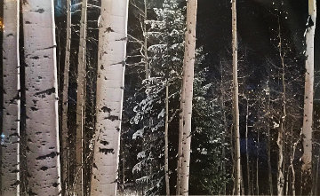 White River Aspens   Panorama by Thomas Mangelsen
