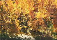 Fire of Autumn - Aspens Panorama by Thomas Mangelsen - 0