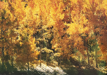 Fire of Autumn - Aspens Panorama by Thomas Mangelsen