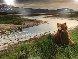 Bear River Panorama by Thomas Mangelsen - 0