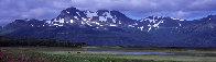 Glacier Travelers Brown Bears 2001 Panorama by Thomas Mangelsen - 0