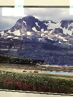 Glacier Travelers Brown Bears 2001 Panorama by Thomas Mangelsen - 3