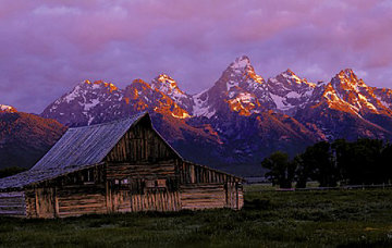 Teton Memories: The Moulton Barn Panorama by Thomas Mangelsen