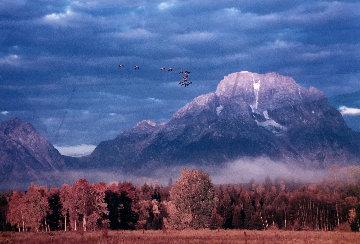 Changing Seasons 1993 Panorama by Thomas Mangelsen