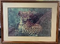 African Nightfall: Leopard 1987 Panorama by Thomas Mangelsen - 1