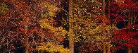 Colors of the Smokies - Super Huge Panorama by Thomas Mangelsen - 1