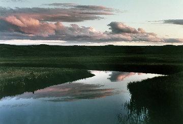 Elk Antler Creek Panorama by Thomas Mangelsen