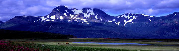 Glacier Travellers Huge  Panorama - Thomas Mangelsen