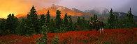 A Change of Season 1998 Panorama by Thomas Mangelsen - 1