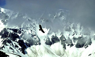 Among the Glaciers 1987 Panorama - Thomas Mangelsen