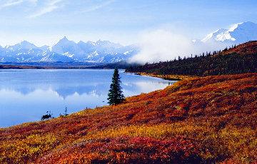 Shores of Wonder Lake Panorama - Thomas Mangelsen