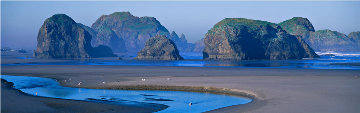 Keepers of the Ancient Coast (Oregon) Panorama - Thomas Mangelsen