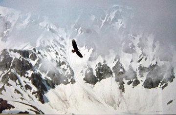 Among the Glaciers Huge Panorama - Thomas Mangelsen
