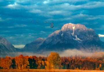 Changing Seasons Panorama by Thomas Mangelsen