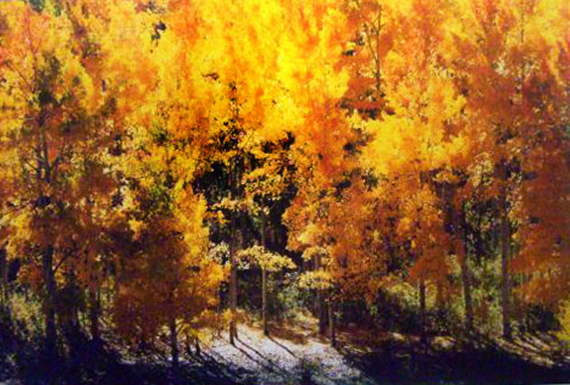 Fire of Autumn Panorama by Thomas Mangelsen