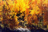 Fire of Autumn Panorama by Thomas Mangelsen - 0