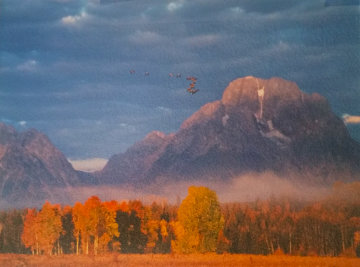 Changing Seasons  Panorama - Thomas Mangelsen