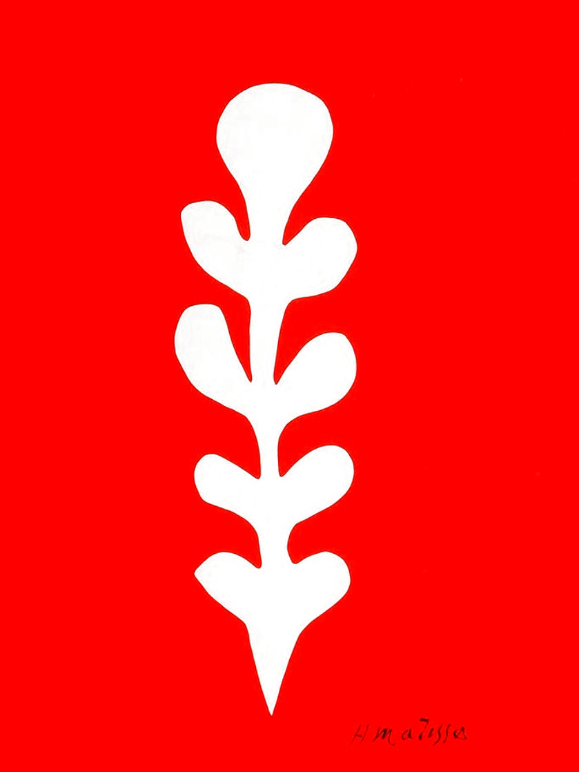 Palme Blanche Sur Fond Rouge 1970 Limited Edition Print by Henri Matisse