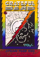 Grateful Dead Ver. II #133 Heavily Embellished Poster 25x17 Works on Paper (not prints) by Peter Max - 0