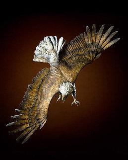 Wings of Fury Bronze Sculpture AP 2012 54 in Sculpture by Jerry  McKellar