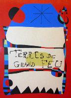 Terres De Grand Feu HS Limited Edition Print by Joan Miro - 0