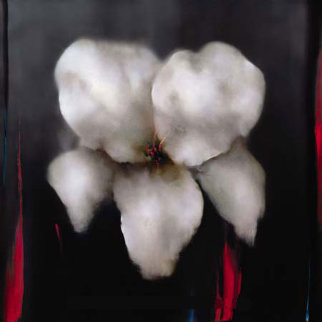 White Lily 2006 Embellished 43x43 Super Huge Limited Edition Print - Victoria Montesinos