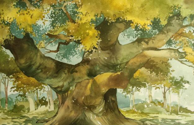 Robin Hood's Oak Watercolor 1998 24x32 Watercolor by Wayland Moore