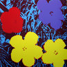 Flowers Suite of 10 Silkscreens 2007 Limited Edition Print by Sunday B. Morning - 1