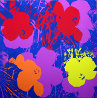 Flowers Suite of 10 Silkscreens 2007 Limited Edition Print by Sunday B. Morning - 7