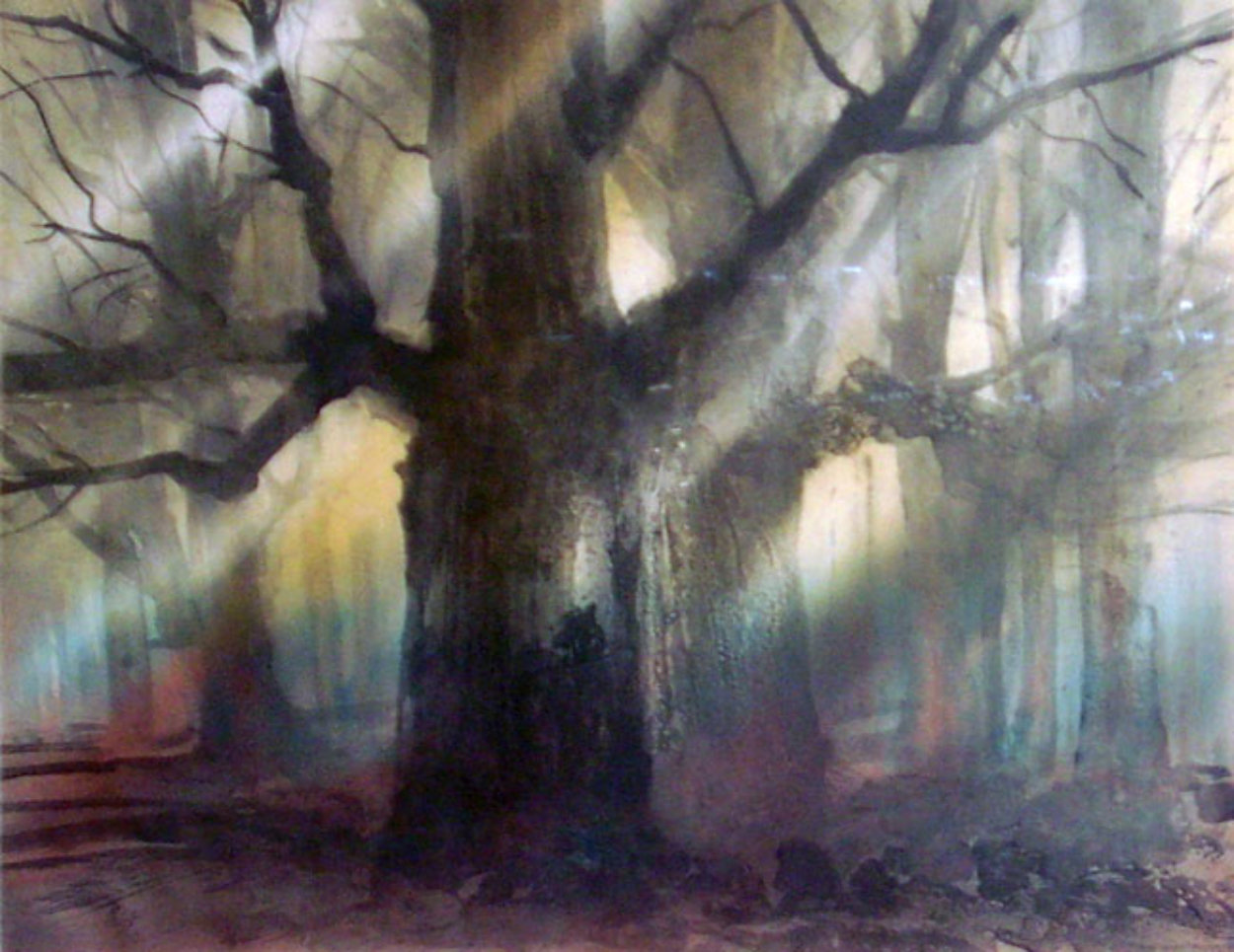 Forest Limited Edition Print by Kaiko Moti