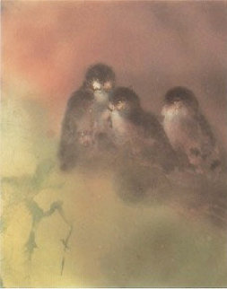 Owl Light 1985 Limited Edition Print by Kaiko Moti