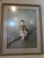 Falcon on Branch Limited Edition Print by Kaiko Moti - 1