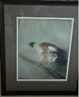 Eagle 1974 Limited Edition Print by Kaiko Moti - 1
