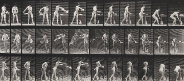 Animal Locomotion, Plate 402 1887 Photography - Eadweard Muybridge