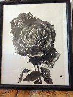 Two Roses VII 2004 23x27 Works on Paper (not prints) by Naoto Nakagawa - 1
