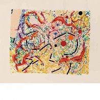Vertigo (Padon 20), 1980 Limited Edition Print by Nancy Graves - 1