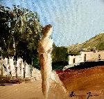 Rural Scenery 24x24 Original Painting - Adriana Naveh