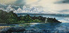 Hanalei Nani, Kauai, Hawaii 1984 Limited Edition Print by Robert Lyn Nelson - 0