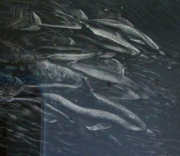 Dolphins From Above 1992 33x34 Original Painting - Robert Lyn Nelson