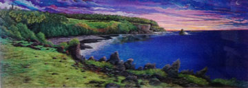 Amethyst Dawn At Kipahuku 1980 Limited Edition Print - Robert Lyn Nelson