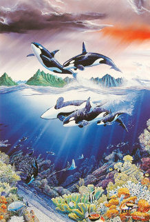 Sea of Magic PP 1988 Limited Edition Print - Robert Lyn Nelson