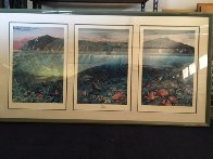 Catalina Triptych Remarked 1988 Limited Edition Print by Robert Lyn Nelson - 3