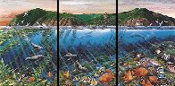 Catalina Triptych Remarked 1988 Limited Edition Print by Robert Lyn Nelson - 0