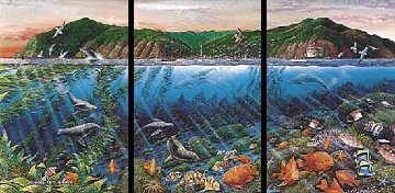 Catalina Triptych Remarked 1988 Limited Edition Print by Robert Lyn Nelson