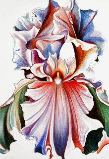 Iris 1981 Limited Edition Print - Lowell Blair Nesbitt