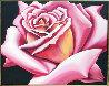 Pink Rose 1976 40x50 Original Painting by Lowell Blair Nesbitt - 0